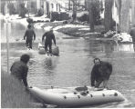 Flood of 1978 in Fort Wayne, IN. Donald A. Weber pulling canoe and Thomas Ebbing at rear on...