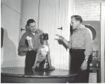 Brutus, mascot at Fire Station No. 4, 1202 Maumee Ave. L-R: Frank Breeden, Brutus, Earl Busse....