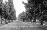 A VIEW ON NORTH MARKET STREET, MONON IN, MOSTLY TREES WITH UNPAVED STREET. POSTCARD 53712.