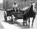African American man driving horse and wagon on Fort Wayne street. The construction of the wagon...